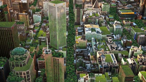 città verdi_i tetti verdi di Melbourne