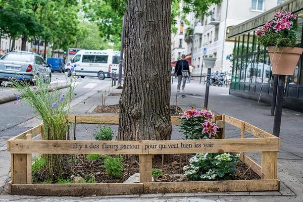 città verdi_parigi e gli orti condivisi